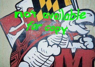 Sports Theme Maryland