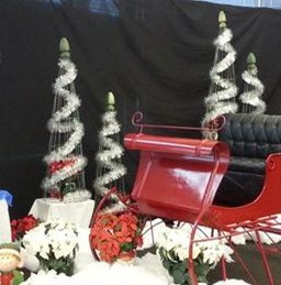 Copy of Decorations- Santas Sleigh (256x259)
